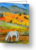 Log Cabins Painting Greeting Cards - White Horse Greeting Card by Beverley Harper Tinsley
