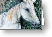 Fine Art Watercolor Drawings Greeting Cards - White Horse Greeting Card by Mindy Newman