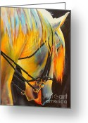 Rodeo Greeting Cards - White Horse Greeting Card by Robert Hooper