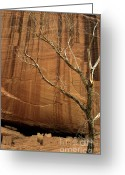 Anasazi Greeting Cards - White House Ruin Greeting Card by Bob Christopher