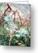 Card Art Greeting Cards - White Mums Greeting Card by Mindy Newman