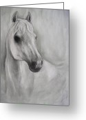 White White Horse Pastels Greeting Cards - White on white Greeting Card by Petra Micuda