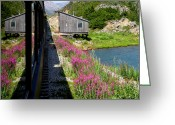 Skagway Greeting Cards - White Pass and Yukon Railroad Greeting Card by David Salter