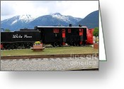 Skagway Greeting Cards - White Pass Train Skagway Greeting Card by Sophie Vigneault