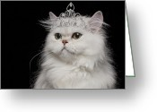 Tiara Greeting Cards - White Persian Cat Wearing Tiara Greeting Card by GK Hart/Vikki Hart