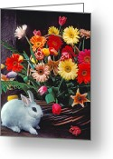 Hare Greeting Cards - White rabbit by basket of flowers Greeting Card by Garry Gay