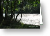White River Scene Greeting Cards - White River Scene Greeting Card by Judyann Matthews