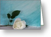 Wrap...floral Greeting Cards - White Rose on Aqua Greeting Card by Marsha Heiken