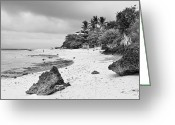 Cebucity Greeting Cards - White Sand Beach Moal Boel Philippines BW Greeting Card by James Bo Insogna