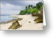 Cebucity Greeting Cards - White Sand Beach Moal Boel Philippines Greeting Card by James Bo Insogna