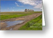 Country Lane Greeting Cards - White Sheds on a Prairie Farm in Spring Greeting Card by Louise Heusinkveld