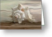 Seashell Art Photo Greeting Cards - White shell Greeting Card by Linda Sannuti