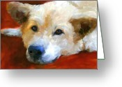 Shepherd Painting Greeting Cards - White Shepherd Portrait Greeting Card by Jai Johnson