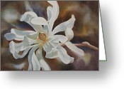 Star Magnolias Greeting Cards - White Star Magnolia Blossom Greeting Card by Sharon Freeman