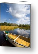 Everglades Greeting Cards - White Tower Greeting Card by Debra and Dave Vanderlaan