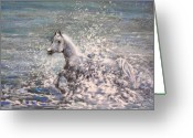 Wild Horse Drawings Greeting Cards - White Wild Horse Greeting Card by Miki De Goodaboom