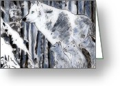 Cubs Painting Greeting Cards - White Wolf Greeting Card by Phil Strang