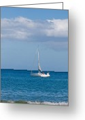 Porthole Greeting Cards - White yacht sails in the sea along the coast line Greeting Card by Ulrich Schade