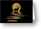 Whitetail Deer Greeting Cards - Whitetail Deer in the Moonlight Greeting Card by Shane Bechler