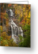 Forceful Greeting Cards - Whitewater Falls 1 Greeting Card by Joye Ardyn Durham