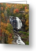 Forceful Greeting Cards - Whitewater Falls 4 Greeting Card by Joye Ardyn Durham