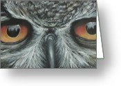Starring Eyes Greeting Cards - Whos Looking Greeting Card by Linda Kemp
