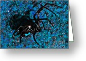 Hourglass Design Greeting Cards - Wicked Widow - Blue Greeting Card by Al Powell Photography USA