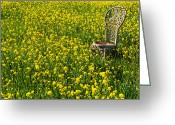 Wicker Chair Greeting Cards - Wicker chair in mustard grass Greeting Card by Garry Gay