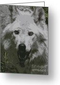 Beautiful Face Wolf Greeting Cards - Wide Eyes Vision Greeting Card by Debra     Vatalaro
