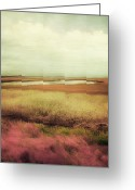 Lowland Greeting Cards - Wide Open Spaces Greeting Card by Amy Tyler
