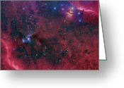 Molecular Clouds Greeting Cards - Widefield View In The Orion Greeting Card by John Davis