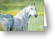 Wild Horses Greeting Cards - Wild as the Wind Greeting Card by Judy Kay