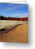 Pebbles Greeting Cards - Wild Blue Yonder Greeting Card by Robert Harmon