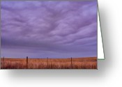 The Lightning Man Greeting Cards - Wild Country Sky Greeting Card by James Bo Insogna