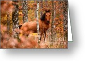 Stallion Greeting Cards - Wild Greeting Card by Evgeni Dinev