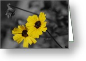 Susan Stevens Crosby Greeting Cards - Wild Flowers Greeting Card by Susan Stevens Crosby