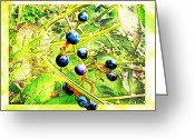 Grape Macro Digital Art Greeting Cards - Wild Grapes II Greeting Card by Debbie Portwood