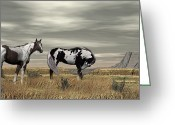 Open Range Greeting Cards - Wild Horses Greeting Card by Walter Colvin