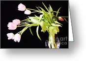 Floral Greeting Cards - Wild Pink Tulips Greeting Card by Lynn-Marie Gildersleeve