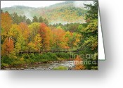 Beautiful Clouds Greeting Cards - Wild River Bridge Greeting Card by Susan Cole Kelly