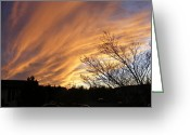 Reds Of Autumn Photo Greeting Cards - Wild Sky of Autumn Greeting Card by Barbara Griffin