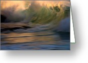 Scott Greeting Cards - Wild Triton Greeting Card by Brad Scott