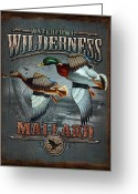 Bruce Greeting Cards - Wilderness mallard Greeting Card by JQ Licensing