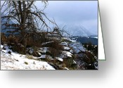 Winter Prints Greeting Cards - Wilderness Greeting Card by Paul Marto