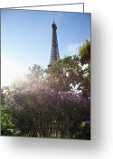 Wildflower Photography Greeting Cards - Wildflowers In Front Of The Eiffel Tower Greeting Card by Paul Hudson