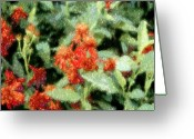 Huisken Greeting Cards - Wildflowers Greeting Card by Lyle  Huisken