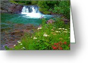 Swiftcurrent Falls Greeting Cards - Wildflowers near Red Rock Falls in Glacier NP Greeting Card by Ruth Hager