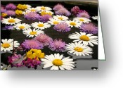 Rain Barrel Photo Greeting Cards - Wildflowers on water Greeting Card by Emanuel Tanjala