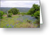 Blue Bonnets Greeting Cards - Willow City Loop Greeting Card by James Granberry