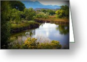 Colorado Mountain Prints Greeting Cards - Willow Creek Greeting Card by Michelle Frizzell-Thompson